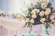 Wolny termin na przyjęcie weselne 4,5 maja 2019